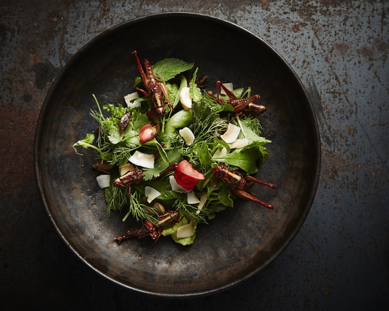Green goddess wild greens salad with pan fried crickets and grasshoppers