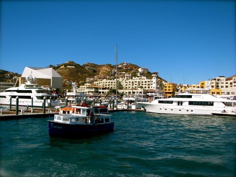 Cabo San Lucas │