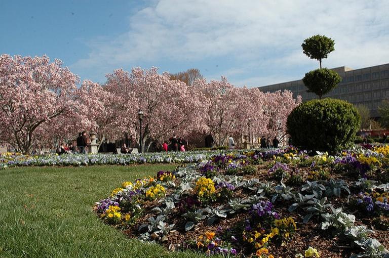 Enid A Haupt Garden