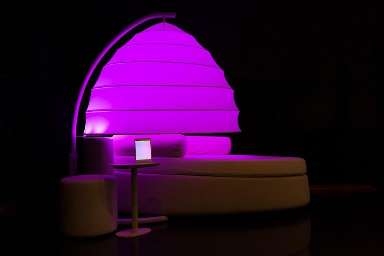 Magenta lights at mycoocoon