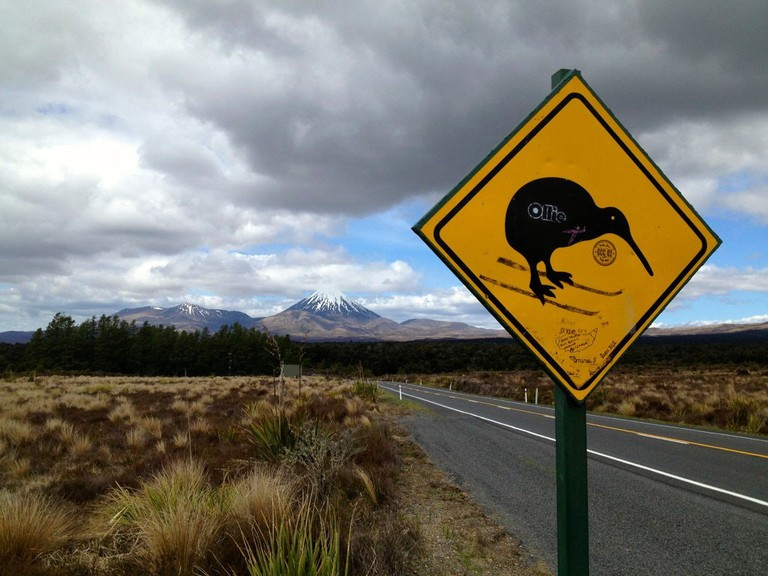 Kiwi crossing sign near Tongariro National Park