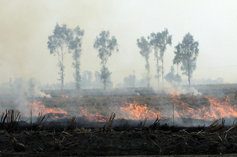 Burning of crop residues