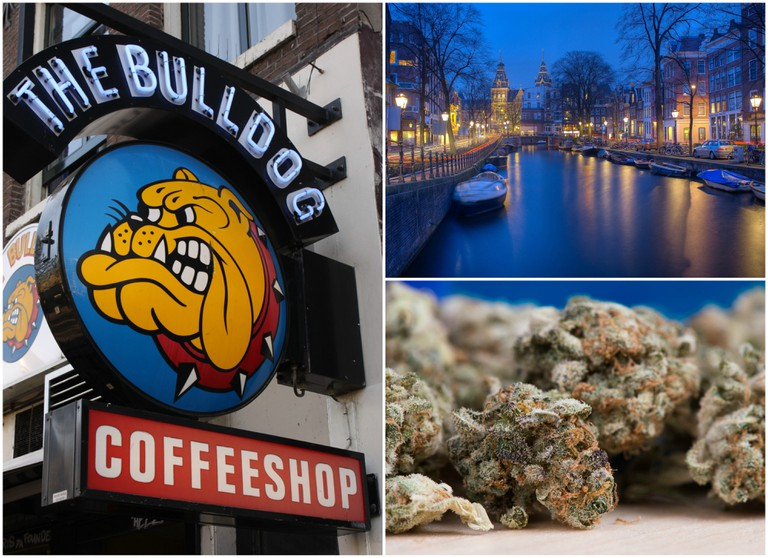 The Bulldog was one of the first coffeeshops in Amsterdam