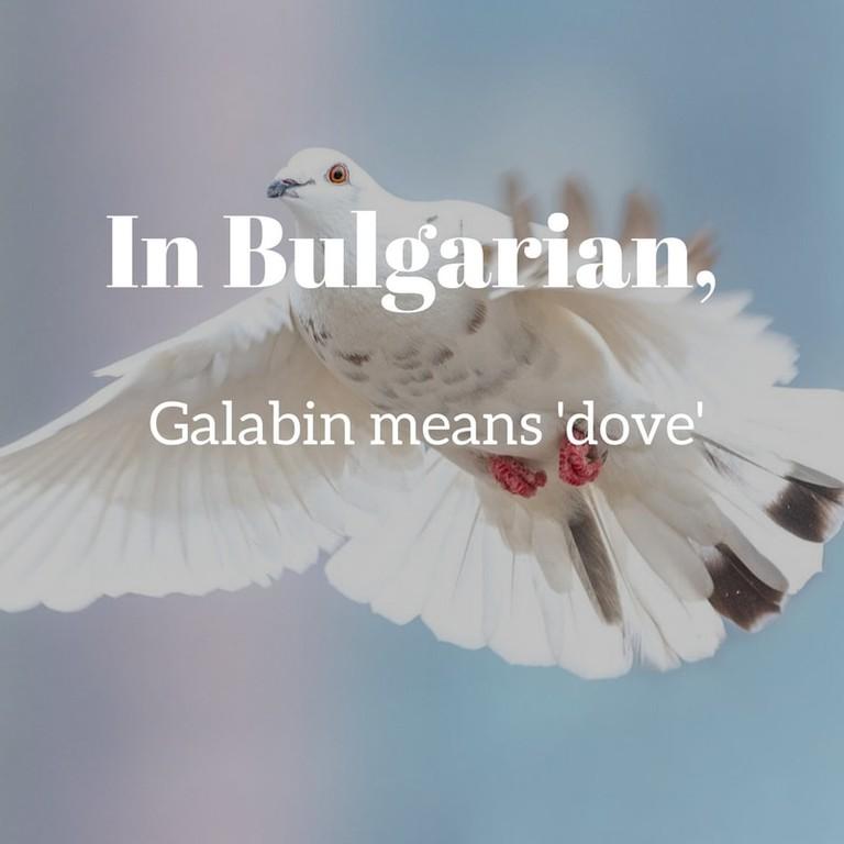 Galabin