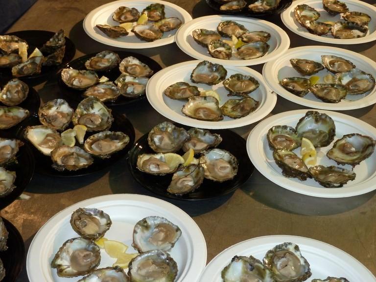 Cornish Oysters
