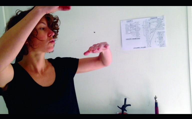 Domptage, La Grâce et la Nature (Taming the Fly)
