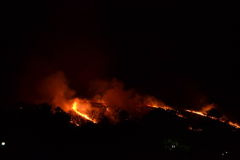 Mt. Wakakusa Mountain Burning Festival