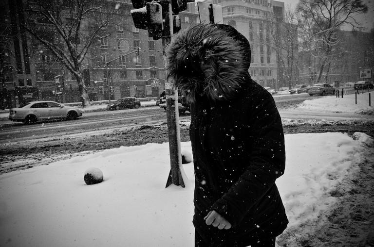 Winter's Last Fury