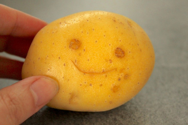 Potato happiess