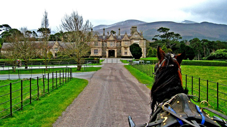 Travel by jaunting car at Muckross House