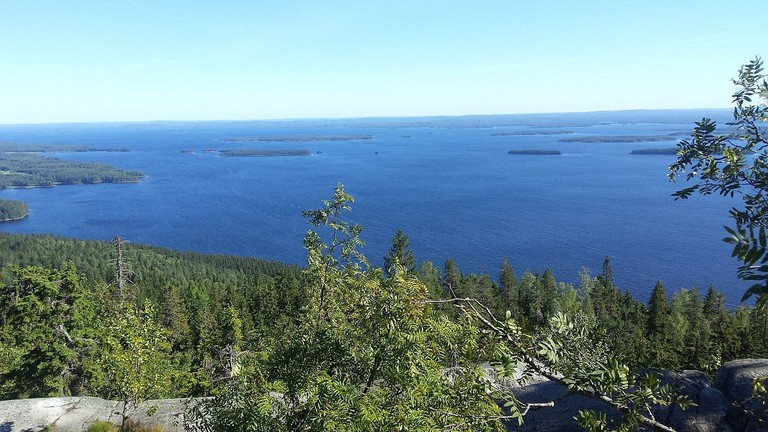 Koli National Park / Enkonga100 / WikiCommons