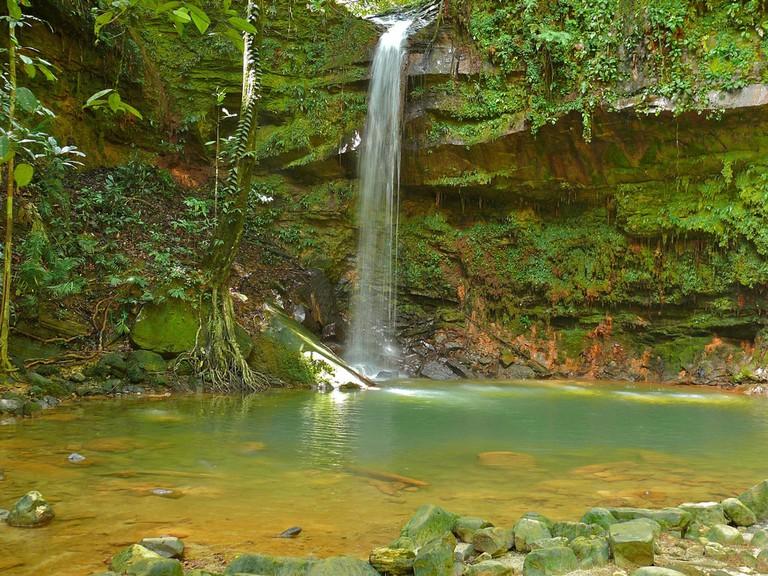 Latak Waterfall and pools at Lambir Hills National Park