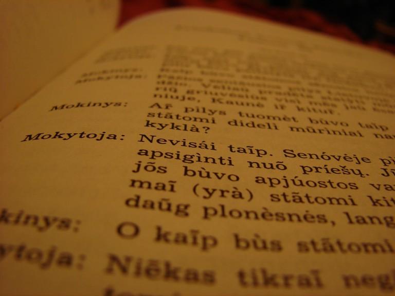 Lithuanian book