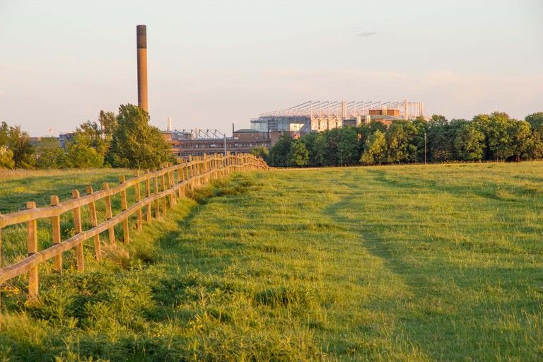 St James Park football stadium veiwed from Town Moor park, Newcastle