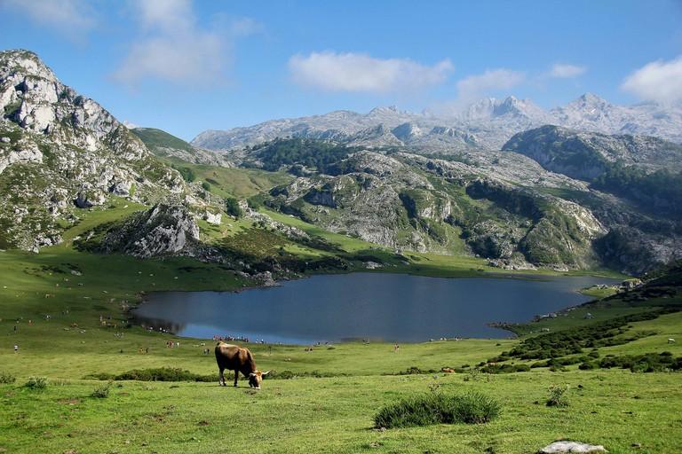 Asturias, Spain | ©Daniel79 / Pixabay