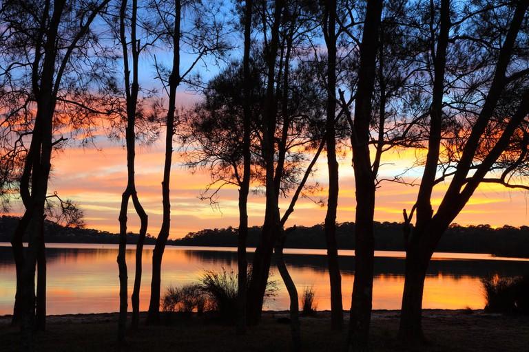 Narrabeen lagoon | © Shutterstock