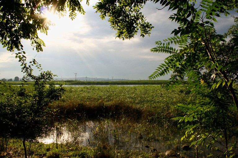 Poda Protected Area, Burgas