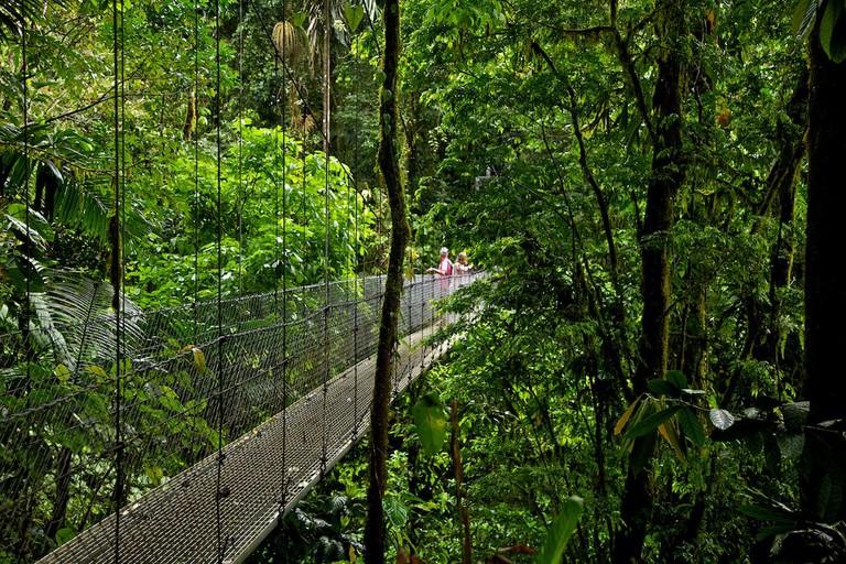 Walk along the hanging bridges