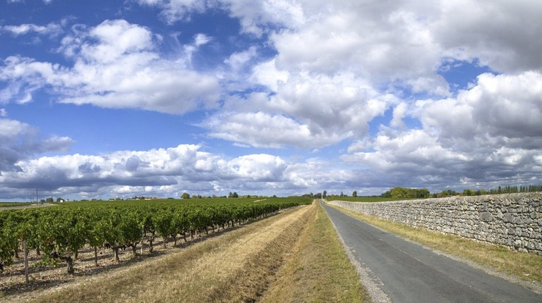 Drive past some of the most prestigious wine properties in the Médoc|