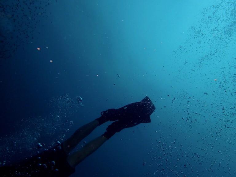 Explore underwater in Panama I