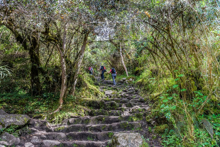 Stairs on the Inca Trail