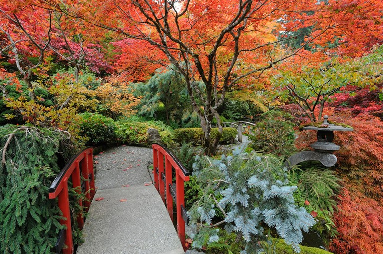 The Japanese Garden at Butchart Gardens