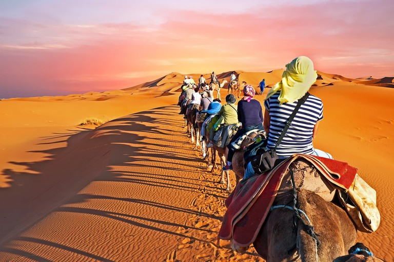Camel caravan going through the desert in Morocco