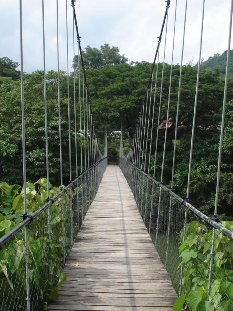 Sway Bridge