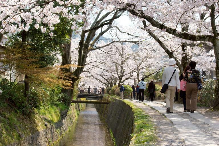 Tetsugaku no michi: Philosopher's Path | © Kimon Berlin/Flickr