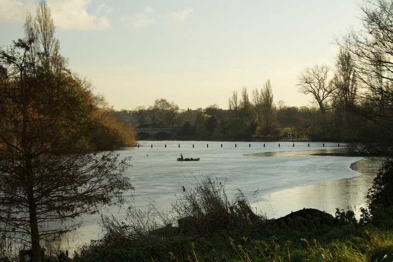 The cold, unwelcoming winter water of the Serpentine in Hyde Park