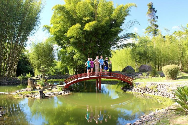 The magical Lankester Botanical Gardens