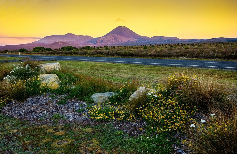 Road near Tongariro National Park