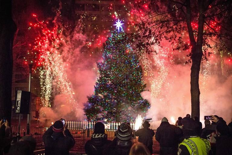 Tree Lighting in Halifax