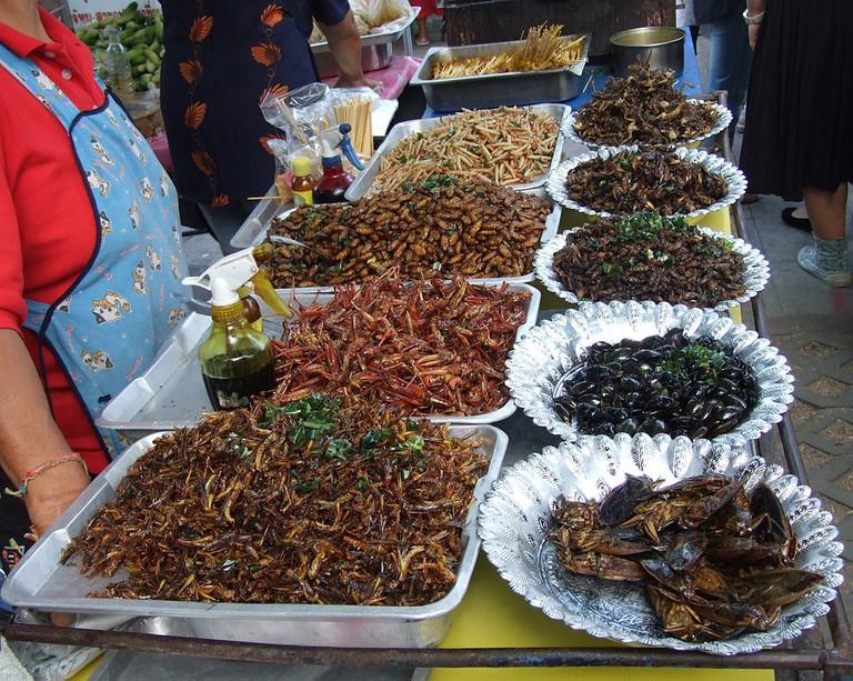 Insekten | © An-d/WikiCommons