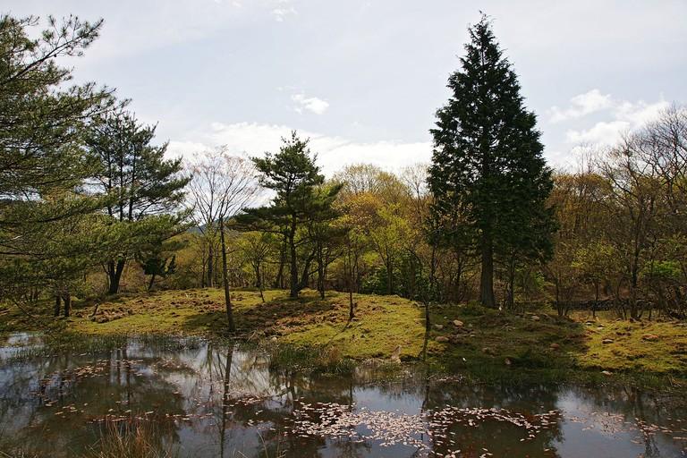 1280px-Mineyama_Highland_in_Kamikawa_Hyogo_pref05n4272