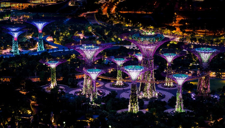 Night View Of Gardens By The Bay