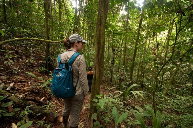 Yasuni National Park, Ecuador| © -MattHewitt- / Flickr