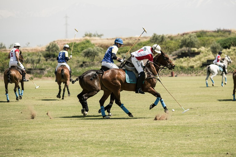 On the polo field
