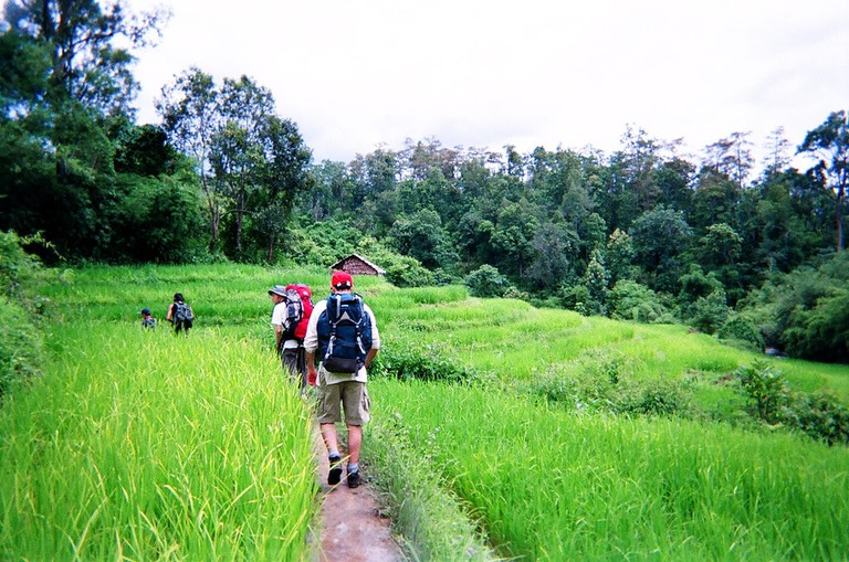Hiking in Thailand