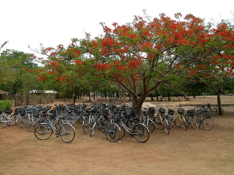 Bike power in Northern Ghana