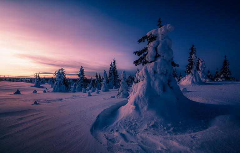 Riisitunturi National Park | © Tapio Kaisla