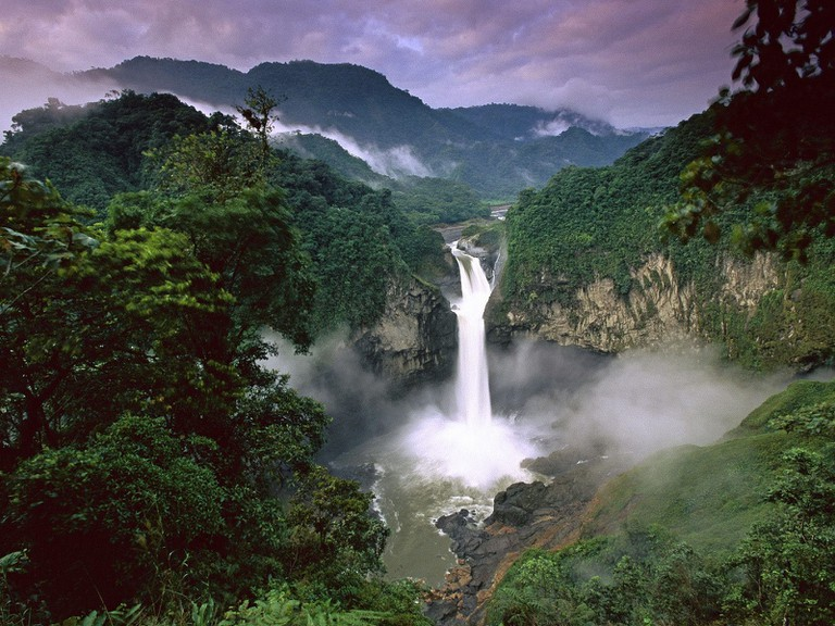 Ecuador: Yasuni National Park | © Alan & Flora Botting / Flickr