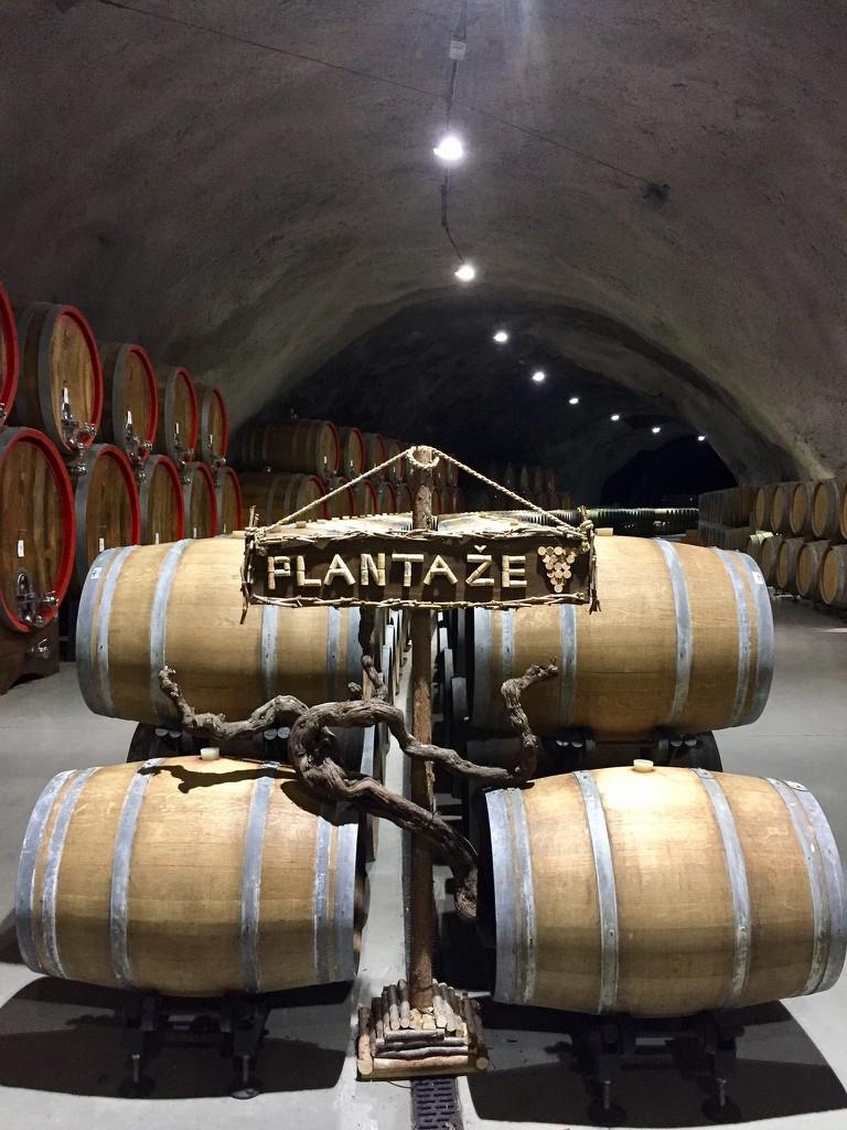 Sipcanik Wine Cellar | © Anna & Michal/Flickr