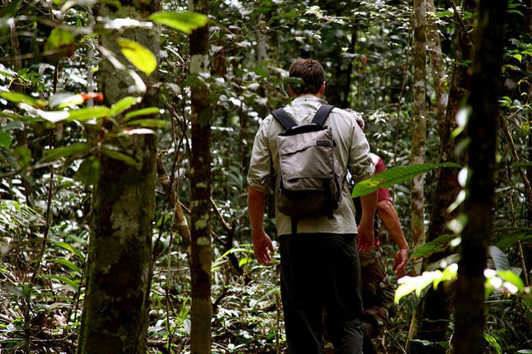 Hiking through the Amazon jungle