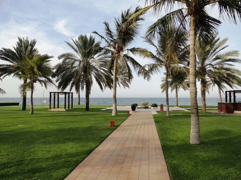 View From Al Bustan Palace
