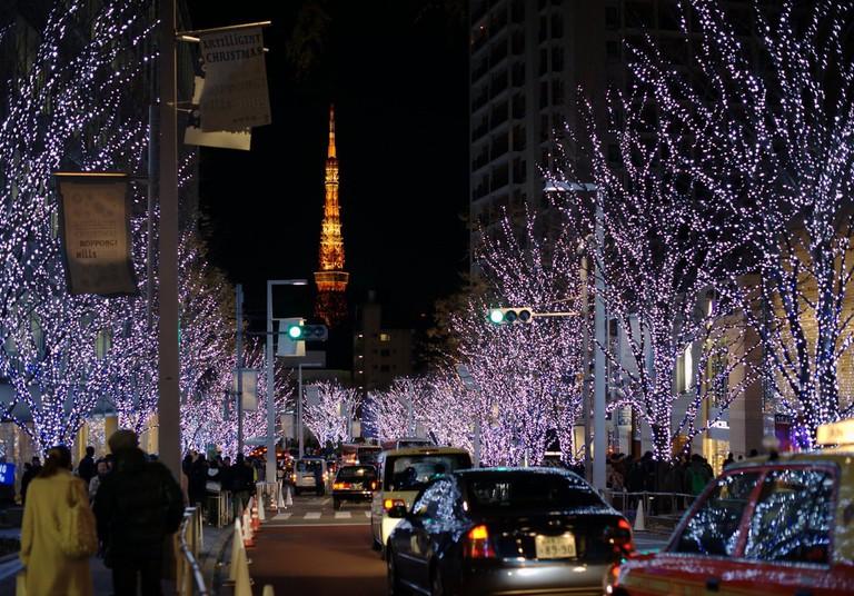Winter tree lightups in downtown Tokyo