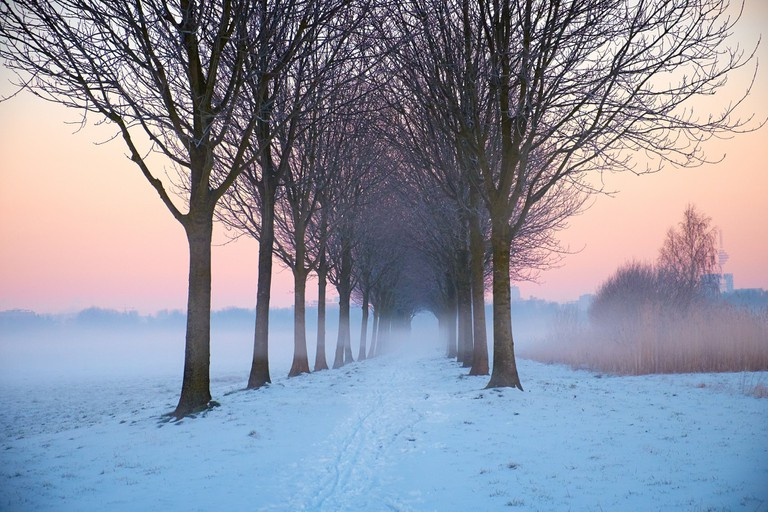 Another beautiful, wintry shot taken outside Ouder Amstell