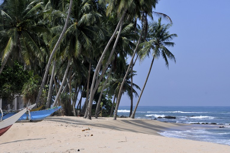 Palm Trees and boats on an idyllic Sri Lankan beach