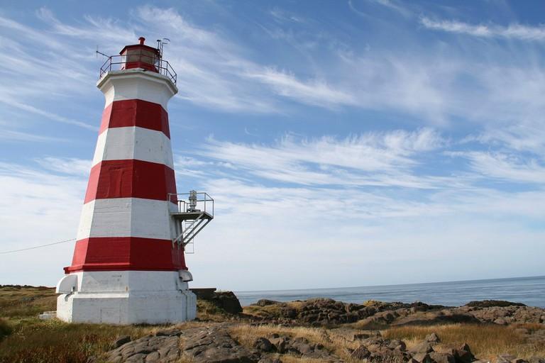 Best Place to go Bird Watching in Nova Scotia