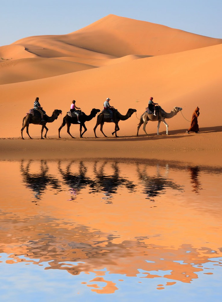 Crazy-Things-You-Have-To-Do-in-Africa_Dromedary